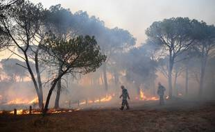 Les incendies dans le Var.