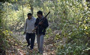 Des gardes forestiers cherchent la piste d'un tigre mangeur d'hommes près de Barahpur, le 1er février 2014 dans le nord de l'Inde