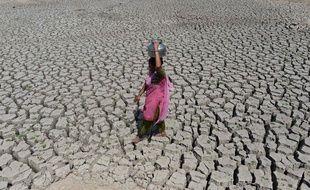 Illustration de la sécheresse en Inde.