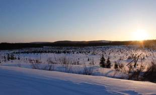 La Vallée de la rivière Broadback au Québec, entourée de forêts qui sont l'ultime territoire de chasse ancestral inviolé de la nation Crie, et l'une des dernières forêts boréales du Quebec, le 12 mars 2014
