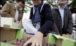 Plusieurs centaines de personnes se sont pressées jeudi matin place de la Bastille pour acheter les 15 tonnes de fruits et légumes vendues directement par des producteurs du Modef, sur initiative du PCF.