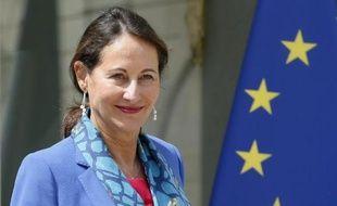 La ministre de l'Ecologie Ségolène Royal à l'issue du Conseil des ministres le 16 juillet 2014