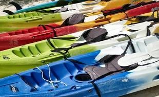 Des kayaks. Illustration.