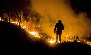 Le feu qui a touché les Pennes Mirabeau, AUFFRET_1051.0442/Credit:LILIAN AUFFRET/SIPA/1608110932