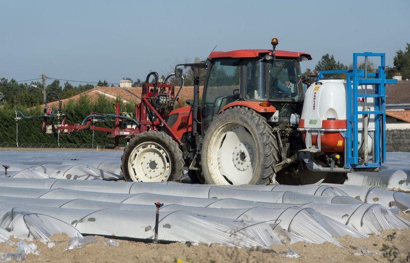 Bretagne: L'arrêté anti-pesticides du maire de Langouët devant la justice