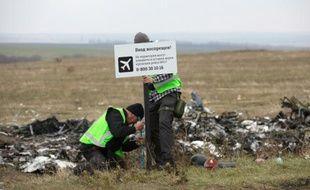 Des enquêteurs néerlandais placent un panneau devant des débris du vol MH17 près du village de Grabove, dans l'est séparatiste de l'Ukraine, le 11 novembre 2014