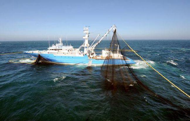 Un thonier retire son filet de l'eau durant une sortie en mer au large de Concarneau, le 2 juin 2009.