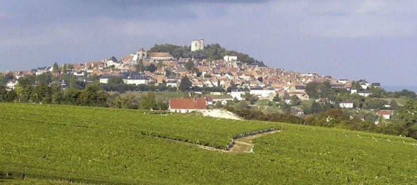 Des vignes entourant la ville de Sancerre (Cher) le 27 septembre 2002