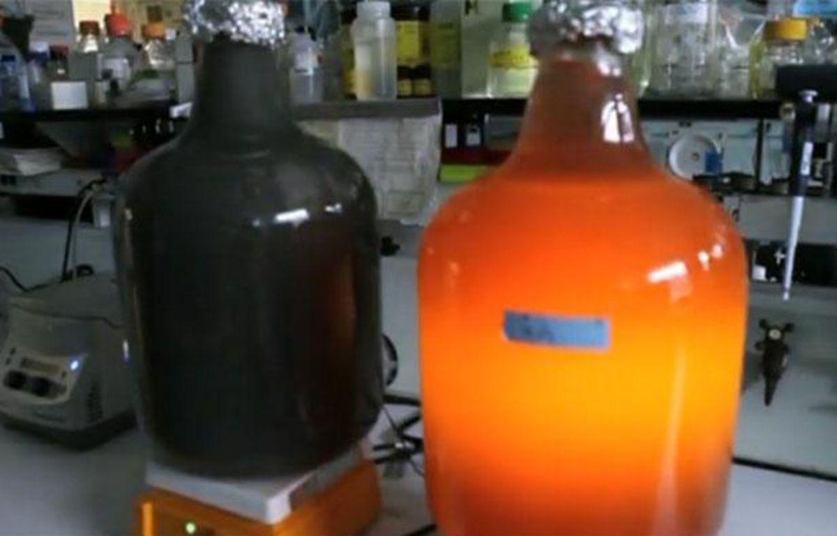 Capture d'écran d'un reportage de Reuters sur un bioréacteur pour générateur électrique utilisant des déchets toxiques comme carburant, à l'Argonne national laboratory (Etats-Unis). – 20minutes.fr