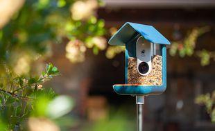 Une mangeoire à oiseaux intelligente récolte plus de 3 millions sur Kickstarter