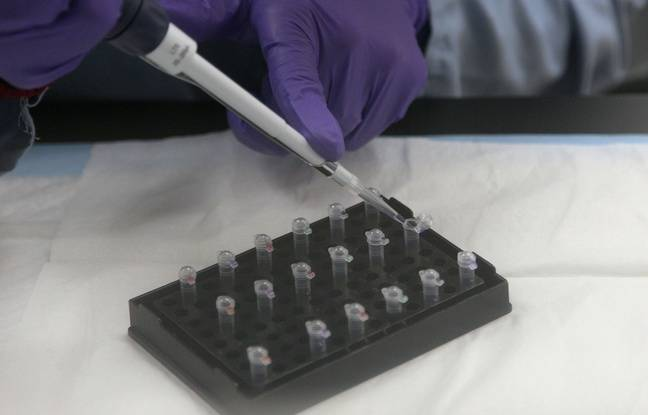 Dans un laboratoire de police scientifique lors d'une analyse ADN