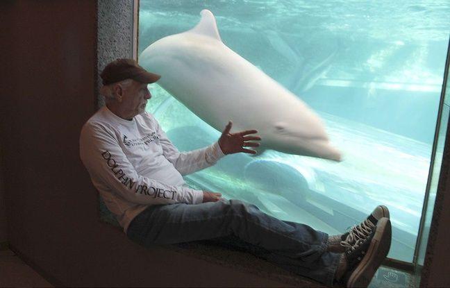 Ric O'Barry au musée de la Baleine de Taiji, au Japon, le 16 septembre 2015.