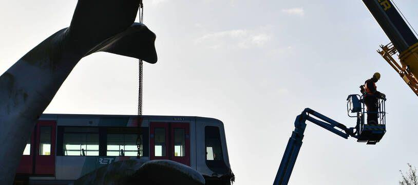Le train s'est « échoué » sur la queue de la baleine en novembre dernier.