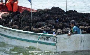 Un bateau de pêcheurs dans la région de Piura, au Nord du Pérou. ( illustration ).