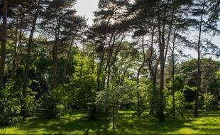 Illustration du parc de Parilly à Bron.