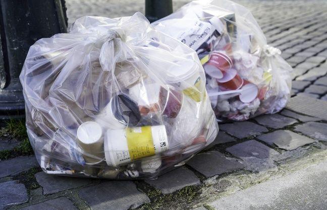 Moselle : Deux cadavres de chiens retrouvés dans le sac poubelle d'un centre de tri
