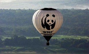 """L'ONG WWF réclame """"une vraie traçabilité"""" du thon rouge pour lutter contre les trafics et la pêche illégale"""
