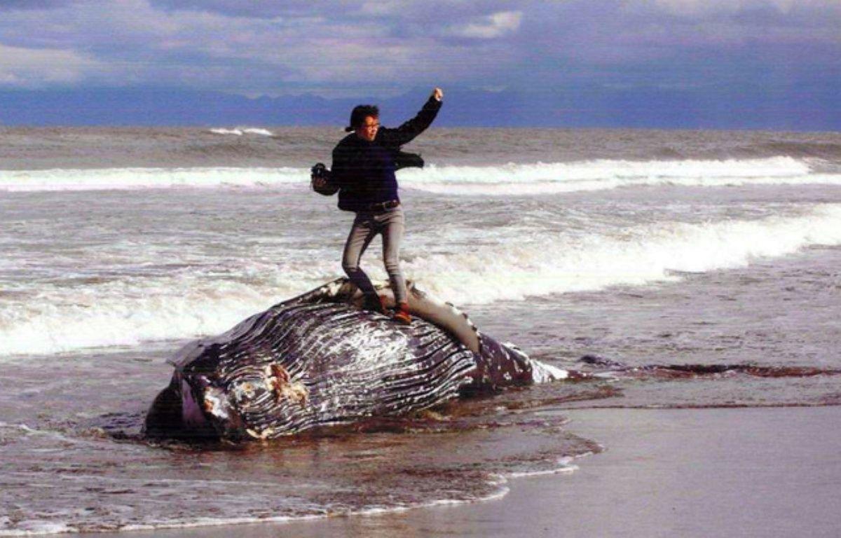 La photo d'un homme sur une baleine morte a provoqué une polémique au Japon. – Musée de la banquise d'Okhotsk