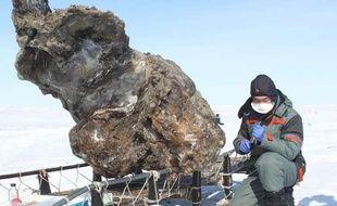 Un chercheur près de la carcasse de mammouth extraite du sol gelé d'une île de l'Arctique, le 13 mai 2013.