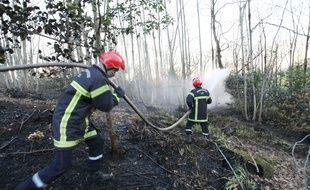 De nombreux pompiers ont été mobilisés sur un incendie de forêt à Roz-sur-Couesnon, près de Saint-Malo, le 18 avril  2017.