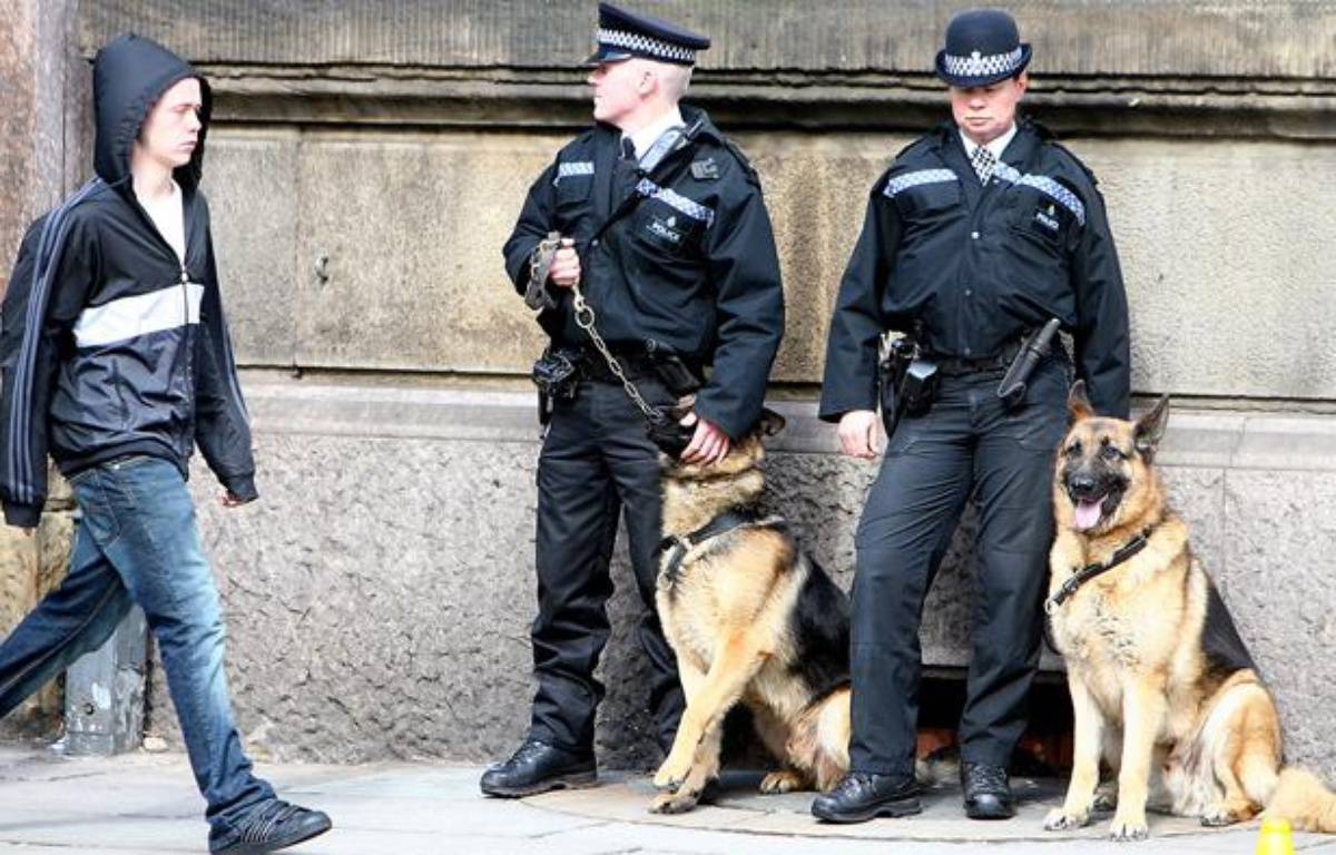Des policiers anglais et leurs chiens, le 17 avril 2008 à Londres. – PAUL ELLIS / AFP