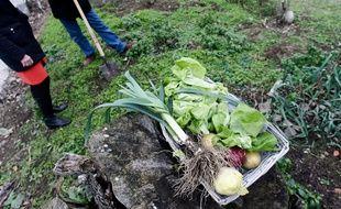 L'association Ecos propose à des jardiniers amateurs de cultiver leurs légumes chez des personnes âgées qui ne sont plus en mesure d'entretenir leur terrain