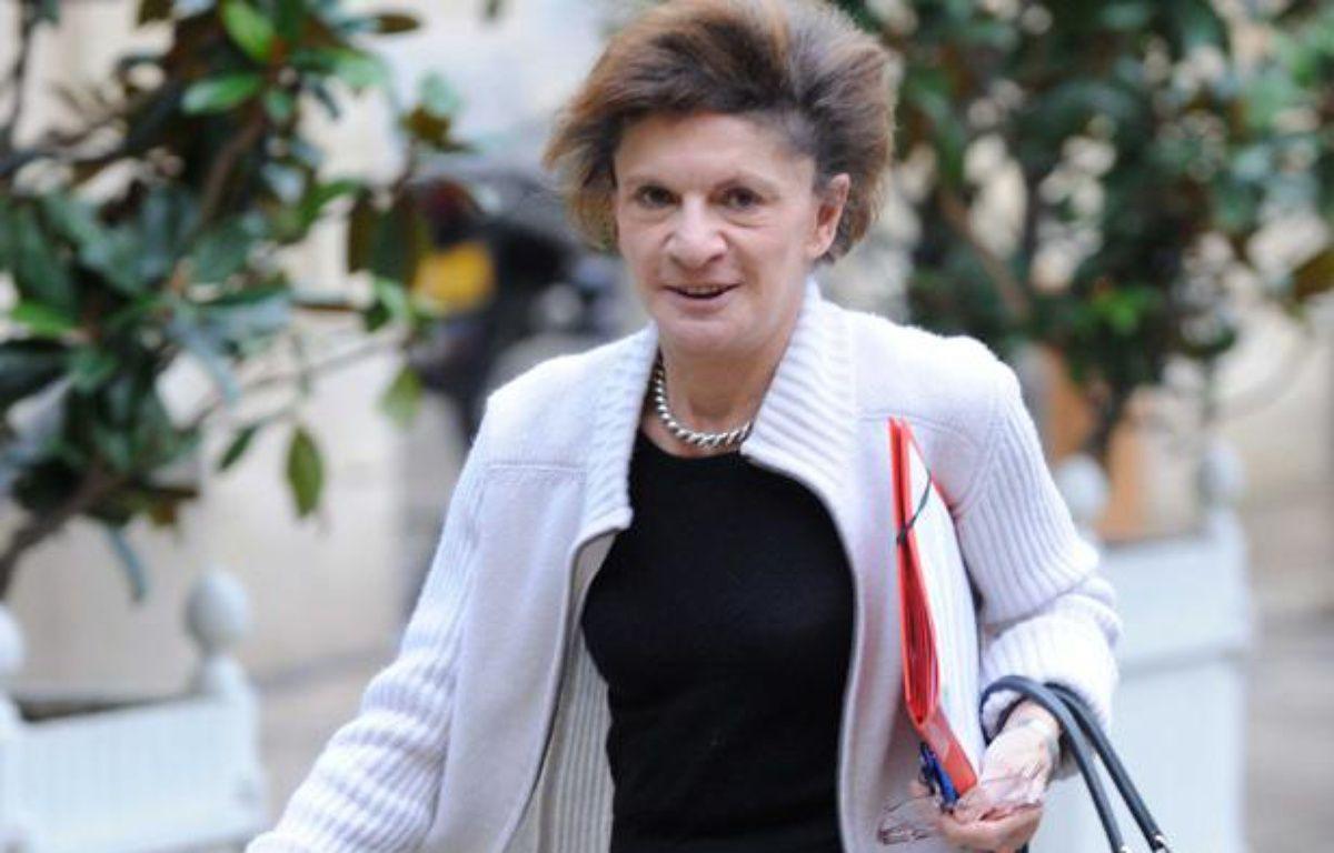 La ministre chargée des Personnes âgées et de l'Autonomie, Michèle Delaunay, le 18 décembre 2012. – WITT/SIPA