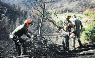 La responsabilité de l'incendie pourrait incomber à toute la chaîne de commandement.
