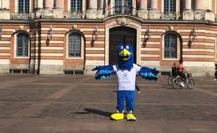 Qui veut se glisser sous les plumes de Fenixou, la mascotte du Fenix Toulouse handball?