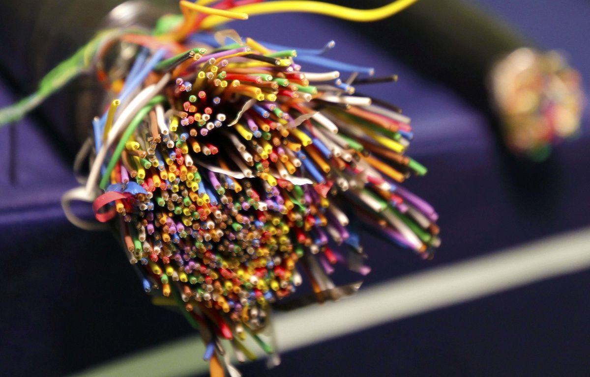 Le câble d'un réseau téléphonique. Illustration. – D. Johnston - AP - Sipa