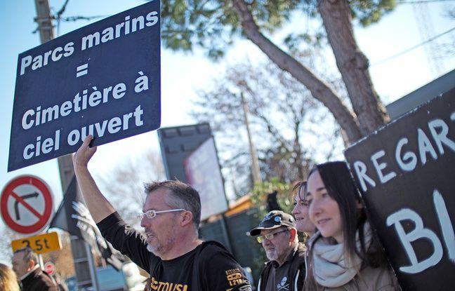 Des militants dénoncent la captivité des cétacés devant le parc Marineland, le 18 décembre 2016