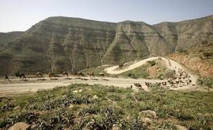 """Un mouvement rebelle a affirmé détenir deux touristes allemands, dont il assure qu'ils sont """"en bonne santé"""", à la suite d'une attaque ayant causé la mort de cinq autres touristes européens la semaine dernière dans le nord-est désertique de l'Ethiopie."""