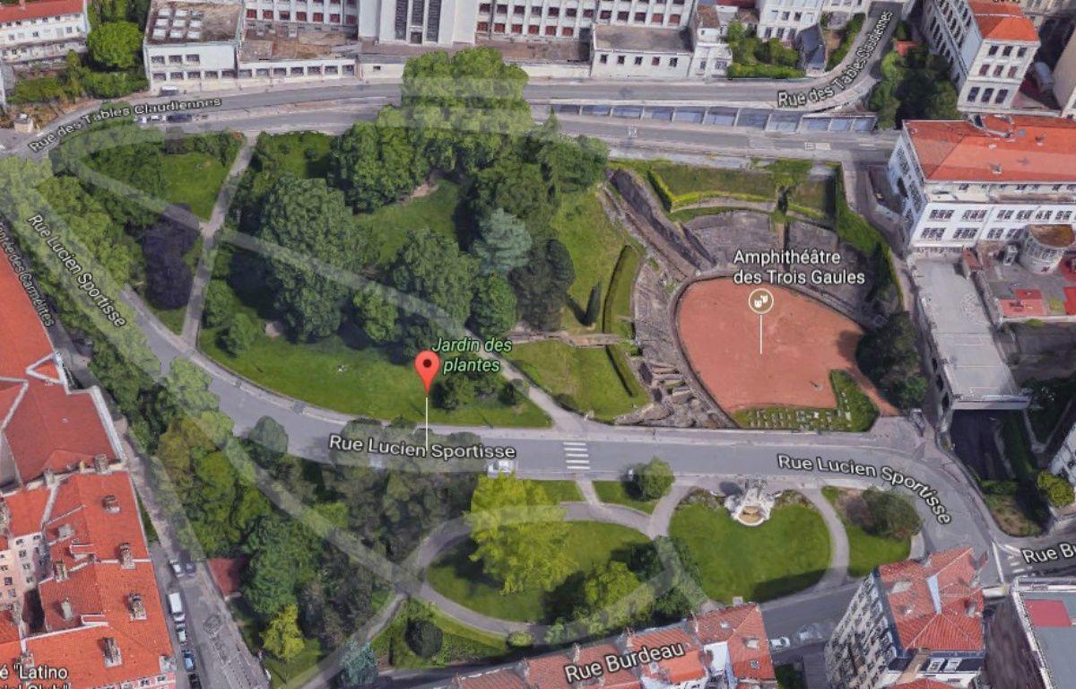 Lyon un arbre menace de tomber au jardin des plantes for Jardin zoologique de lyon