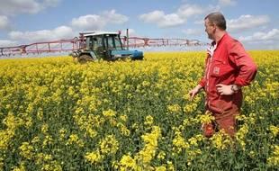 Les agriculteurs français retrouvent le sourire après une année2009 noire