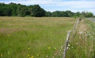 Les 27 hectares comprennent des près et des bois.