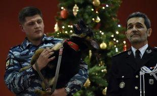 Un officier de police russe tient un chiot berger allemand lors d'une cérémonie organisée à l'ambassade en présence de militaires russes et français à Moscou, le 7 décembre 2015