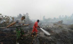 Des pompiers indonésiens luttent contre des incendies à Rimbo Panjang, dans la province du Riau, le 15 septembre 2015