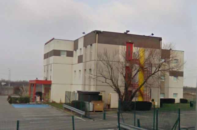 Monte casino bird park shows