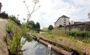 Des radeaux flottants ont été végétalisés et installés sur la Vilaine, à Rennes. Ici avant leur départ vers la place de la République.