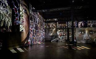 """Vue de l'Atelier lors de l'expositio immersive """"Last Sentinels"""""""