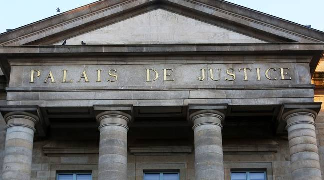 Guadeloupe : Pour l'assassinat de sa mère, une adolescente condamnée à 14 ans de prison