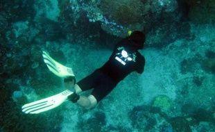 L'île touristique indonésienne de Bali va protéger une zone maritime de 20.000 hectares, très populaire auprès des plongeurs, où les récifs coralliens sont menacés par la pêche et la pollution, a-t-on appris auprès des autorités.