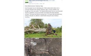 Capture écran du post Facebook de Sligo-Leitrim Archaeological Services, montrant l'arbre déraciné sous lequel le corps d'un homme tué à l'époque médiévale a été retrouvé.