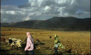 Les recherches se poursuivaient dimanche pour retrouver les cinq touristes européens et plusieurs Ethiopiens capturés jeudi par des hommes armés dans le nord-est de l'Ethiopie, alors que cinq des Ethiopiens enlevés ont été retrouvés selon l'agence éthiopienne ENA.