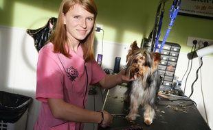 Eva Michel, 21 ans, est championne de France de toilettage canin.