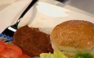 Le premier steak «in vitro» a été dégusté lundi 5 août 2013 à Londres.