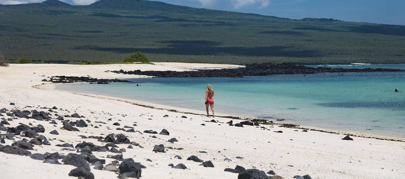 Une plage des îles Galapagos en mars 2019.