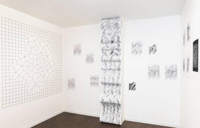 Les oeuvres d'art de Julien Gachadoat, sont créées grâce à des algorithmes sur ordinateur, et imprimées au crayon grâce à un traceur.