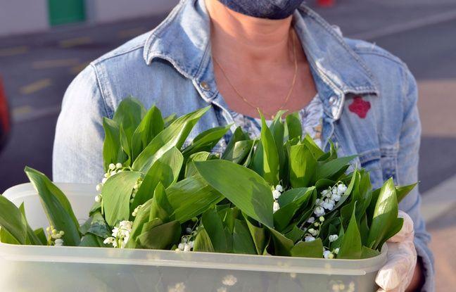 Coronavirus à Toulouse: Les fleuristes pourront vendre du muguet... mais devant leurs portes