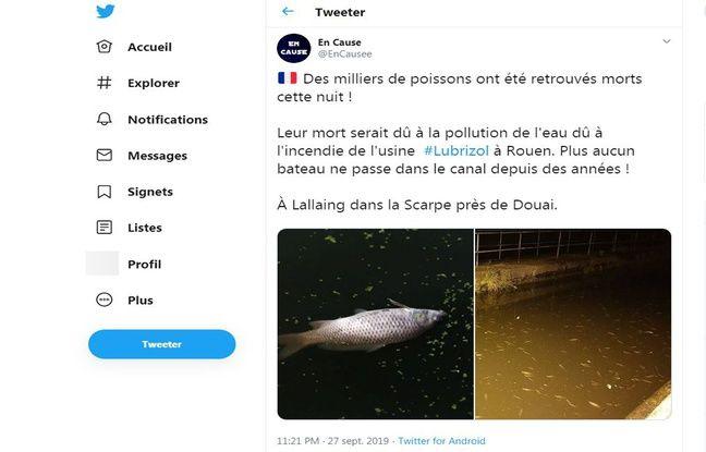 La photo de gauche provient d'une banque d'images, celle de droite montre les poissons morts.
